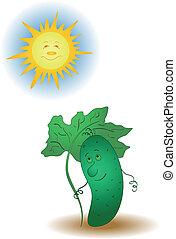 Cucumber and the sun - Summer illustration, cucumber under ...