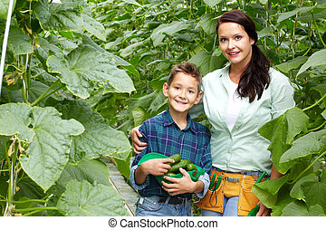Cucumber crop - Woman and her son with crop of cucumbers in ...