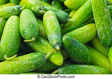 Cucumber in the market