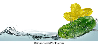 Cucumber in the spray of water.