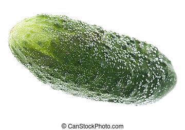 cucumber in water macro