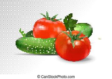Cucumbers and tomatoes composition on transparent background. Realistic vector, 3d illustration