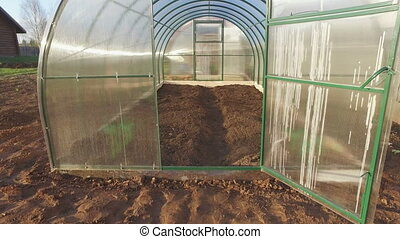 Cucumbers growth in the greenhouse - Cucumbers growth in the...
