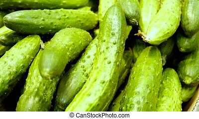 Cucumbers on a market shelf closeup footage.
