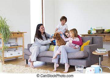 cuddles, casa, com, a, cão