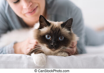 Cuddly cat on the bed