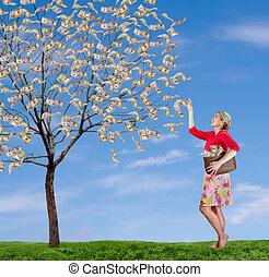 cueillette, femme, arbre, atteindre, argent, fermé, haut