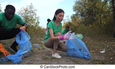 cueillette, volontaires, déchets, dehors, multiracial, haut