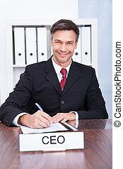 Cuenta, ejecutivo, macho, feliz