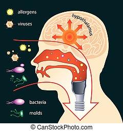 cuerpo, penetración, humano, parásitos