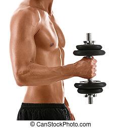cuerpo, sexy, muscular, peso, hombre