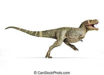 cuerpo, vista., lleno, lado, t-rex