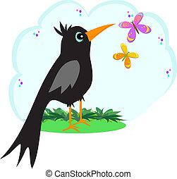 cuervo, mariposas, negro