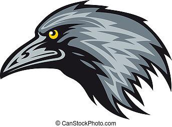 cuervo, mascota