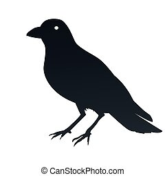 cuervo, símbolo