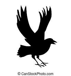 cuervos, blanco, vector, silueta, plano de fondo