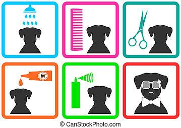 cuidado animal estimação, ícones