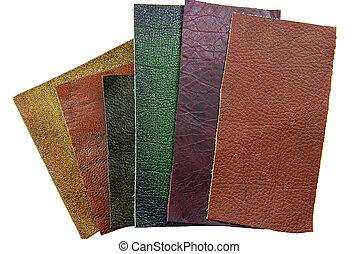 cuir, échantillons, choix, de, texture