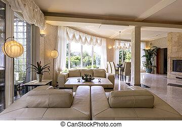 cuir, vivant, clair, salle, sofas