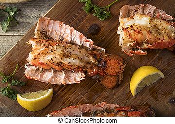 cuit, homard, queues, chevronné