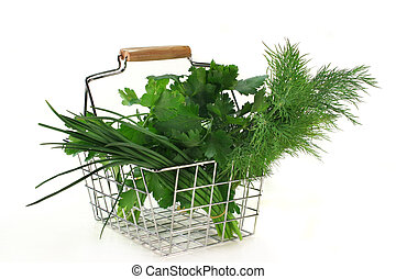 different culinary herbs on a white background