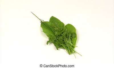 Culinary herbs - Bunch of culinary herbs on a rotating...