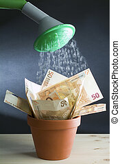 With a bucket of water, washed down by fifty euro banknotes in a orange vase