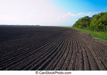cultivated field after cultivation of land