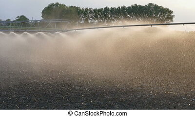 Cultivated field watering - Watering of cultivated field in...