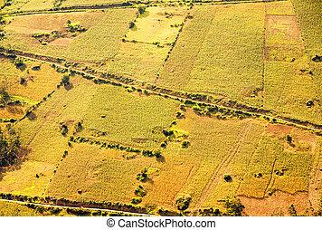Cultivated Land Aerial Shot In Ecuador