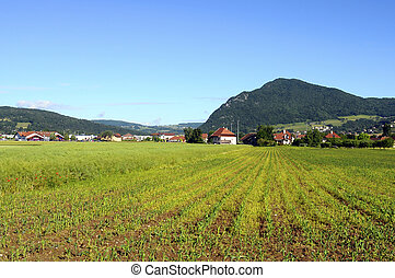 Cultivated land, field, Savoy, France - Cultivated land,...