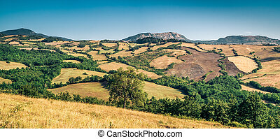 Cultivated land in northern Apennines - Cultivated land in ...