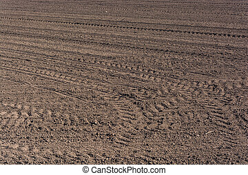 Cultivated Land - Plowed fertile soil with tractor traces -...