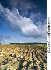 Cultivated land with no plants against cloudy sky
