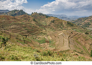 Cultivated mountains in Uganda