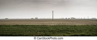 cultivated plain