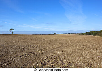 patterns and texture of newly cultivated chalky soil in the yorkshire wolds under a blue sky