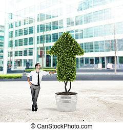 cultivates, plante, concept, compagnie, arrow., forme, croissant, homme affaires, économie