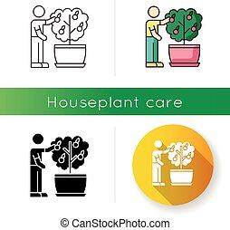 cultivation., plant., icon., cuidado, rgb, fruta, fruiting, ...