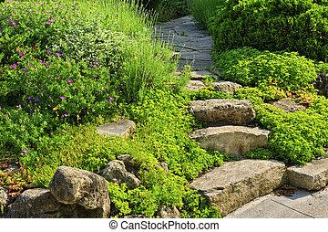 cultive caminho, com, pedra, ajardinar
