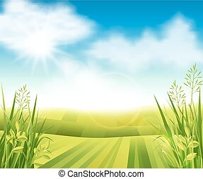 cultive campo, verde