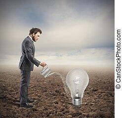 cultive, um, idéia