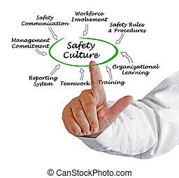 cultura, seguridad