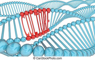 Culture DNA Strands Heritage Ancestry 3d Illustration