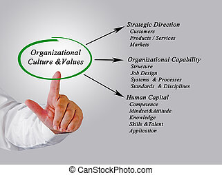 culture&values, organisationnel