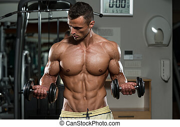 culturista, dumbbells, bíceps, ejercitar