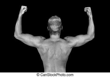 culturista, espalda, muscular