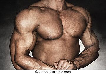 culturista, fuerte, macho
