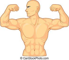 culturista, muscoli, flessione