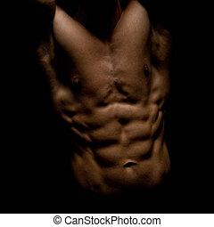 culturiste, mâle, torse, musculaire